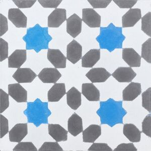 246b cementtegels bloem patroon