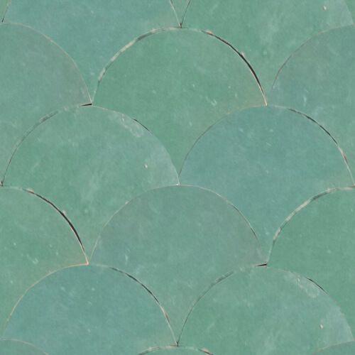 Geglazuurde tegels visschub